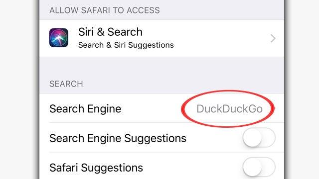 Search Engine Alternatives to Google | Rush Limbaugh