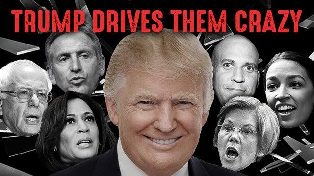 Image result for crazy democrats