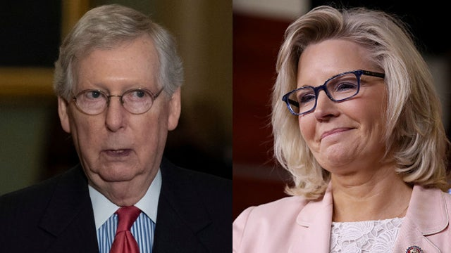 Partner Content - Cheney Pushes Back, The Turtle Turns Down the Temperature