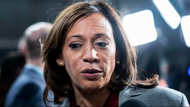 Partner Content - Kamala Couldn't Overcome Mayor Pete, Mini Mike, Russian Agent