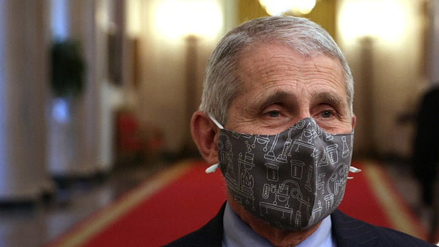 Pointing Out the Hypocrisy of the Infallible Dr. Fauci